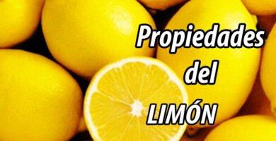 PROPIEDADES LIMÓN