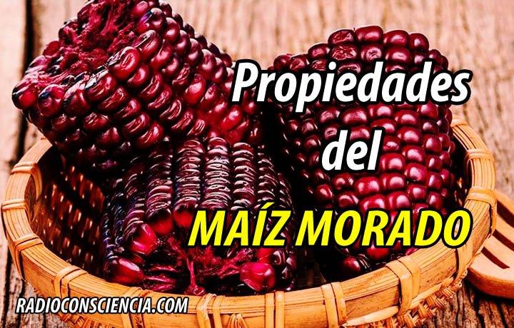 PROPIEDADES MAÍZ MORADO