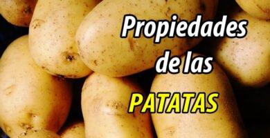 PROPIEDADES PAPA PATATAS