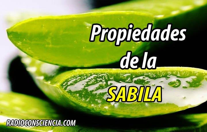 PROPIEDADES SABILA