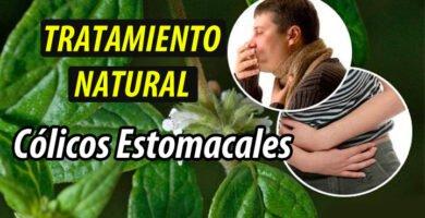 TRATAMIENTO NATURAL Cólicos Estomacales