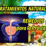 TRATAMIENTO NATURAL prostata plantas