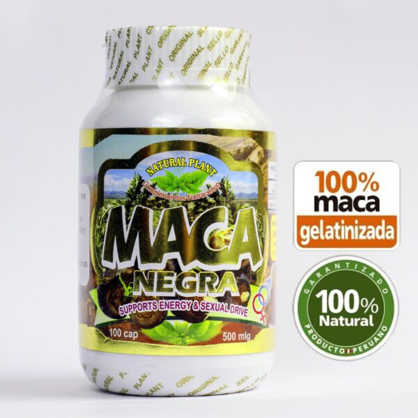 Maca negra black maca comprar buy internet