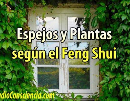 espejos-plantas-feng-shui-ubicacion